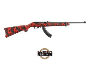 21156 10/22 Carbine