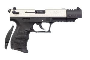 5120326 P22 Target