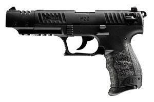 5120334 P22 Target California