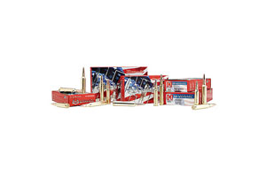 80801 American Whitetail