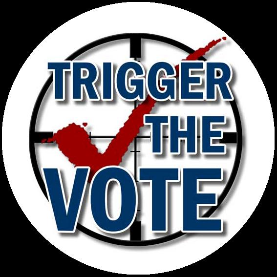 Gun Vote